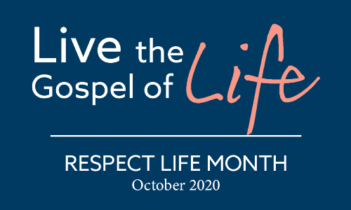 Live the Gospel of Life | Respect Life Reflection